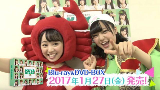 [動画] 「KEYABINGO!」Blu-ray&DVD 本編・特典ダイジェスト映像公開!