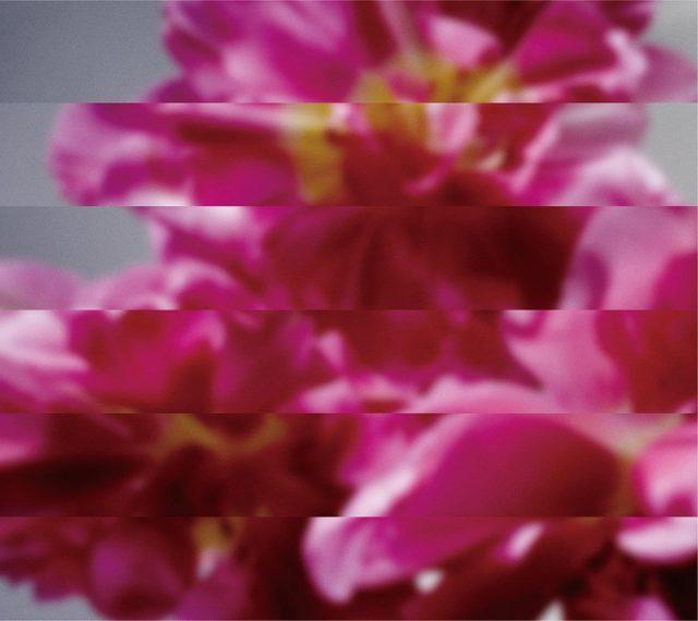 MONDO GROSSO アルバム「何度でも新しく生まれる」